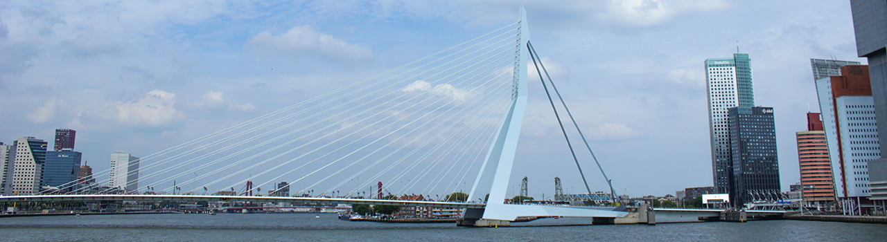 bridgerotterdam